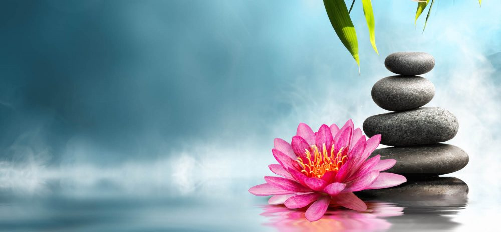 slider 2 - flower with water